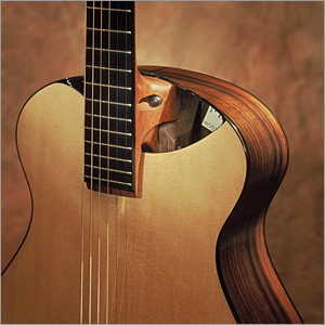 Soundholes Australiannew Zealand Luthiers Forum